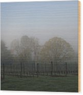 Foggy Vineyard Morning Wood Print