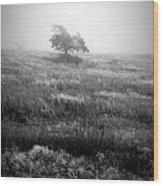 Foggy Winter II Wood Print