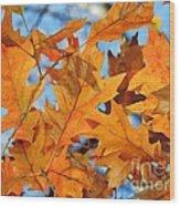 Foglie Di Arancio Wood Print