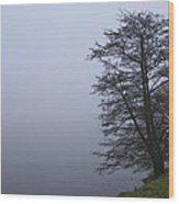 Fogy Lakeside Wood Print