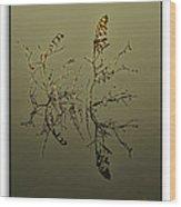 Fogy Reflection Wood Print