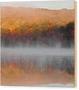 Foilage In The Fog Wood Print