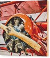Fokker Dr.1 Wood Print