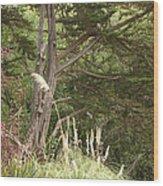 Foliage Art Wood Print