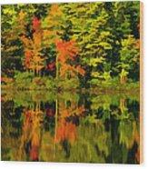 Foliage In New Hampshire Wood Print