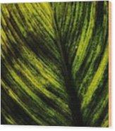 Foliole Wood Print