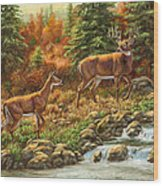 Whitetail Deer - Follow Me Wood Print by Crista Forest