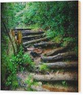 Follow Me To An Adventure Wood Print by Lorraine Heath
