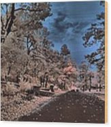 Follow The Infrared Road Wood Print by Thomas  MacPherson Jr