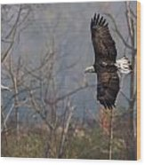 Follow The Leader  Wood Print by Glenn Lawrence