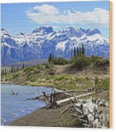 Following The Athabasca River Wood Print