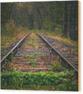 Following The Tracks Wood Print