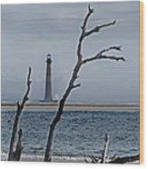 Folly Beach Wood Print by Skip Willits