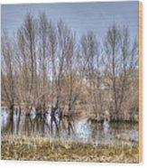 Folsom Dried Pond  Wood Print