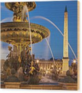 Fontaine Des Mers Wood Print