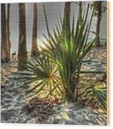 Fontainebleau Shore Wood Print