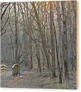 Foot Bridge In Fort Harrison State Park Wood Print