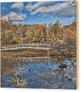 Foot Bridge Wood Print