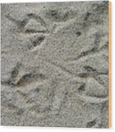 Foot Prints In The Sand Wood Print