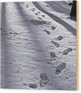 Foot Steps In The Snow In A Forest  In Denmark Wood Print