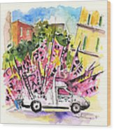Football Flags From Palermo Wood Print