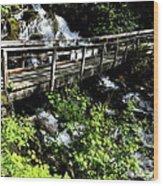 Footbridge Wood Print