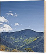 Foothhills Of The Sandia Mountain Range New Mexico Usa Wood Print