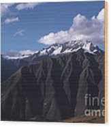 Foothill Of The Andes Wood Print