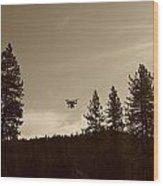 Foothills Flight Wood Print