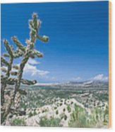 foothills of the Sangre De Christo Mountains Wood Print