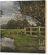 Footpath Bridge At Tidmarsh Berkshire Wood Print