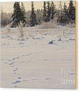 Footprints In Fresh Snow Wood Print