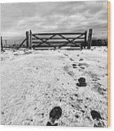 Footprints In The Snow Wood Print by John Farnan