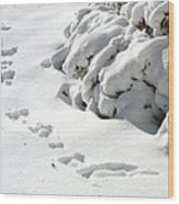 footprints in the Snow Wood Print