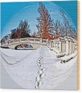 Footprints In The Snow - Sphere Wood Print