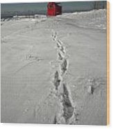 Footprints Leading From The Lighthouse Big Red During Winter Wood Print
