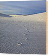 Footprints Wood Print by Mike  Dawson