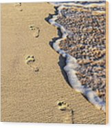 Footprints On Beach Wood Print