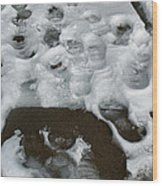 Footprintscomp 2009 Wood Print
