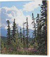 For Spacious Skies Wood Print