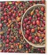 Foraged Rose Hips Wood Print