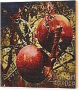 Forbidden Fruit Wood Print