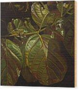 Forbidden Fruits Wood Print