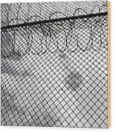 Forbidding Prison Fence Wood Print