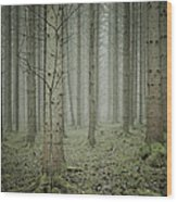 Forest #1 Wood Print