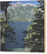 Forest And Lakes Lanin National Park Wood Print