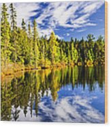 Forest And Sky Reflecting In Lake Wood Print by Elena Elisseeva