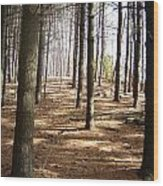 Forest And Trees Wood Print