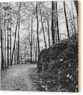Forest Black And White 6 Wood Print