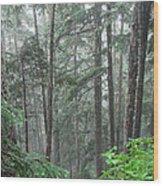 Forest Bluff Wood Print